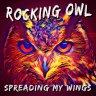 Rocking Owl - Musicienne